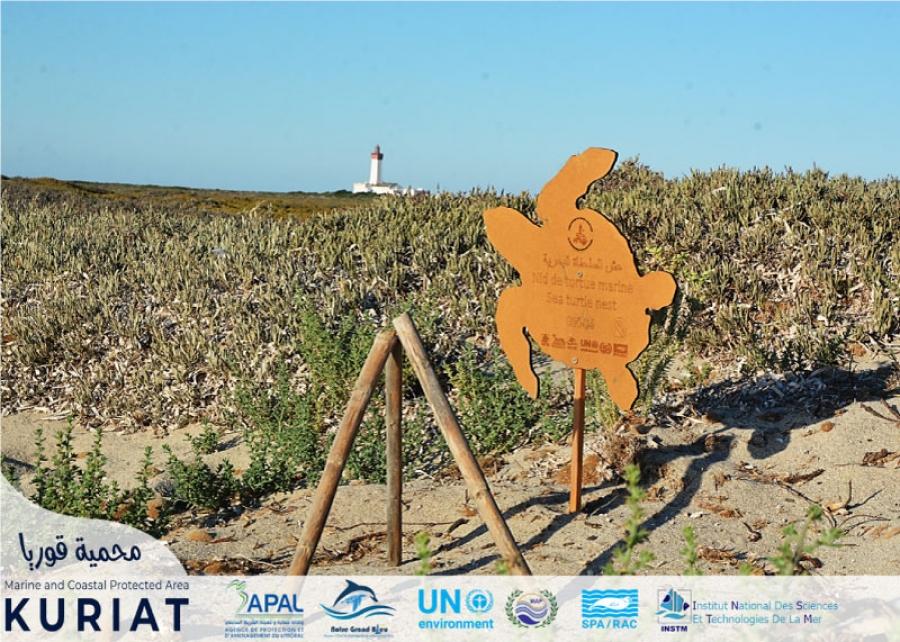 Kuriat islands – Monastir: The success story of ...